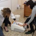 Η πρόληψη και η θεραπεία της οστεοπόρωσης, Ιστιαία 2011
